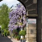 Kynance Mews SW7 South Kensington Spring
